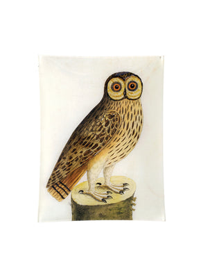 Great Brown Owl 10 x 13 Inch Rect. Tray