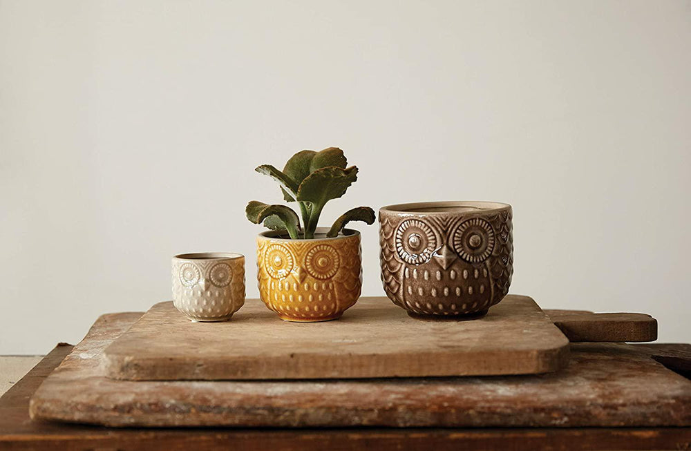 Set of 3 Owl Pots