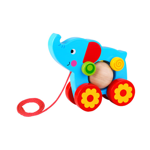 Tooky Toy Pull Along Wooden Pet Animals