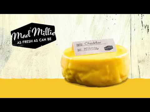 How to Make Cheddar