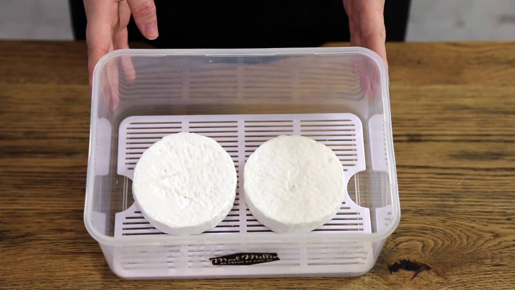 Quick view of how to make Camembert