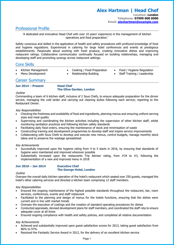 curriculum vitae ched template