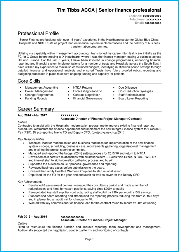 executive cv template and 5 executive cv examples  land
