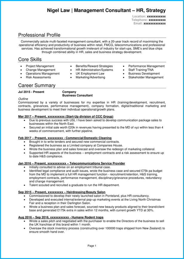 Self employed CV - consultant 1