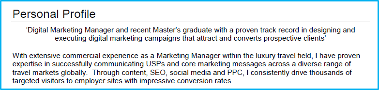 Digital marketing CV profile