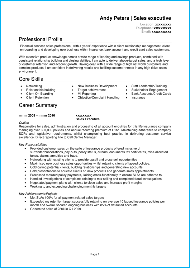 Google Docs Sales CV executive page 1