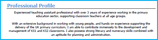 Teaching assistant profile