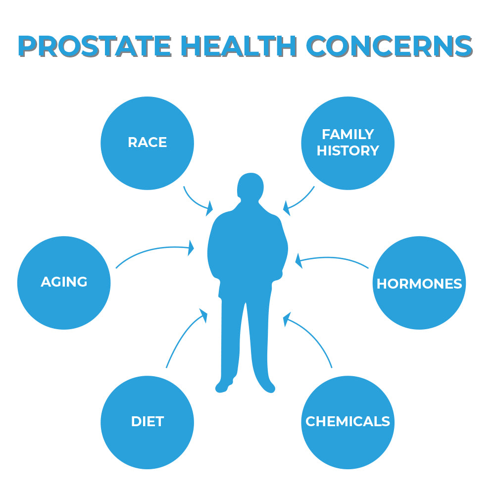 Prostate health concerns – Where can you go for answers?