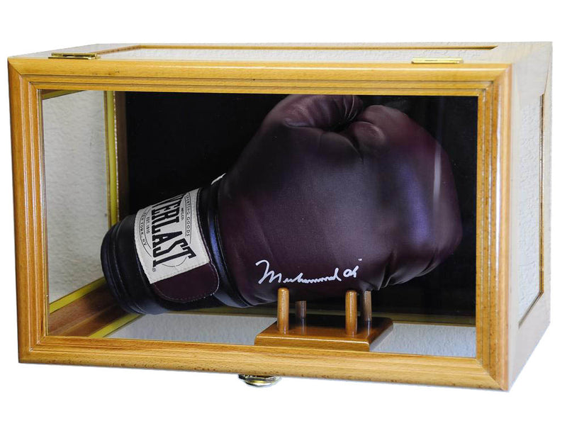 Boxing Glove Display Case (Wall Mounting/Free Standing)