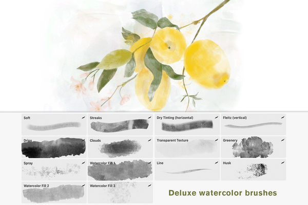 Realistic Watercolor Brushes for Procreate