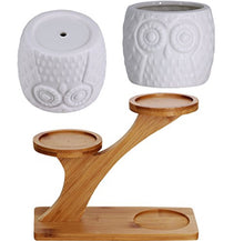 Load image into Gallery viewer, 3 pcs ceramic planters with bamboo stand - set