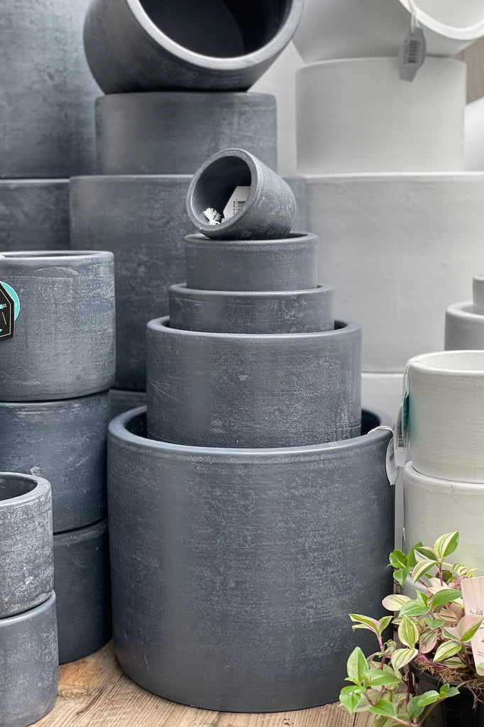 Pastello Cylinder - Charcoal