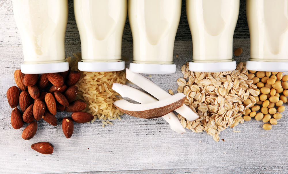 Protein from nuts
