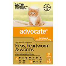 Load image into Gallery viewer, Advocate Fleas, Heartworm & Worms For Kittens & Small Cats Up To 4kg
