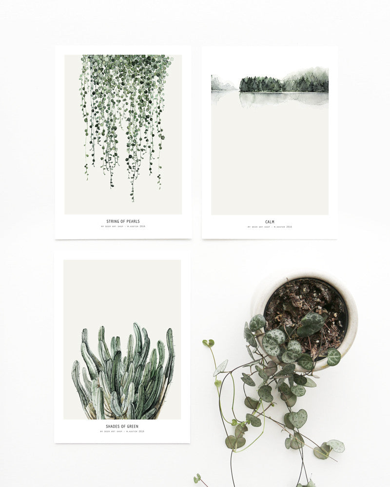 3 x mini art prints Botanics
