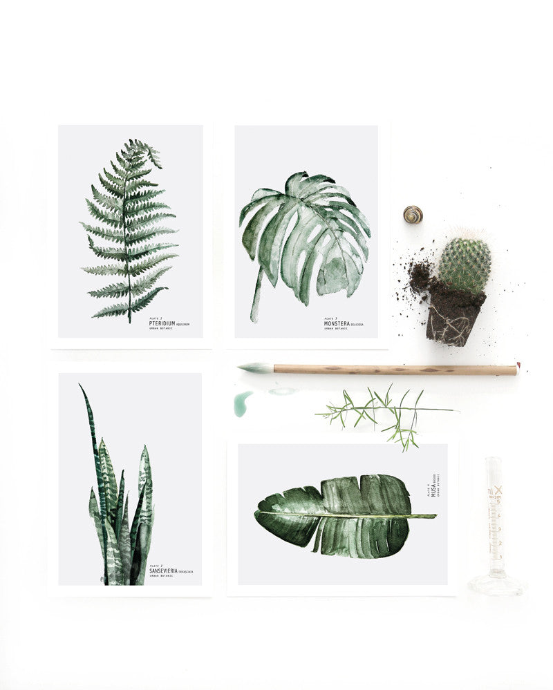 4 x mini art prints Urban Botanic