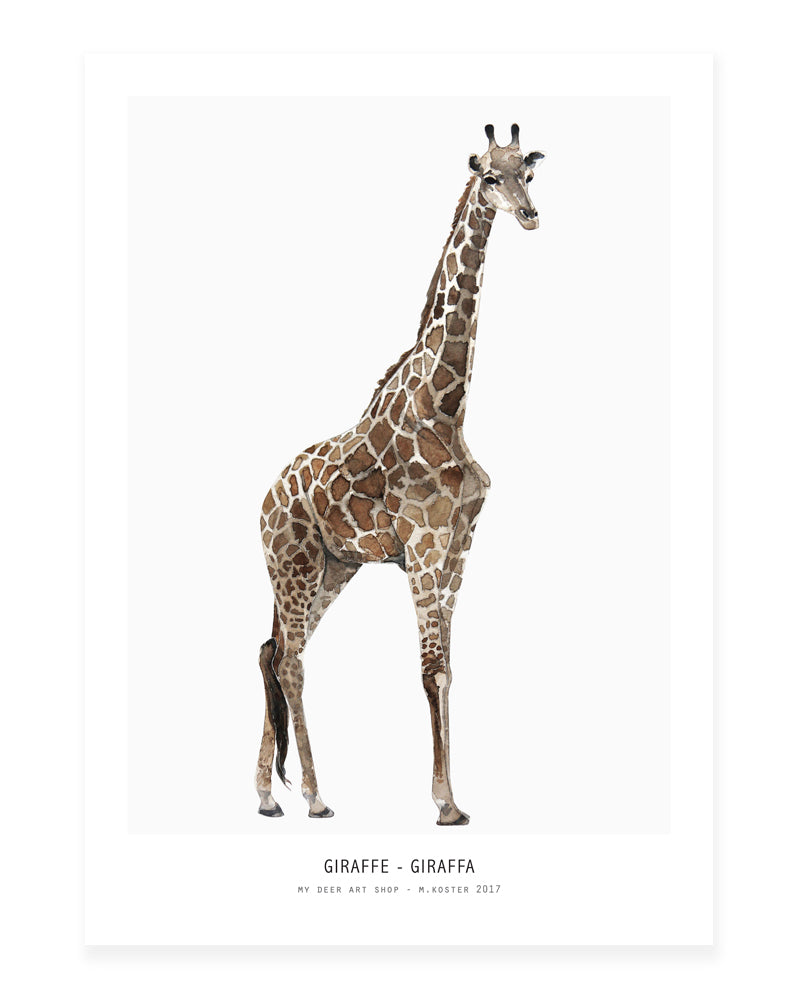 A5 Mini art print - Giraffe