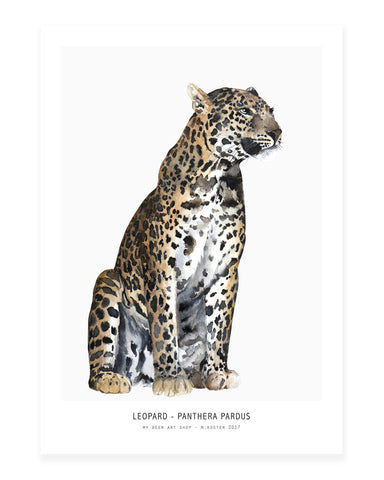A5 Mini art print - Leopard