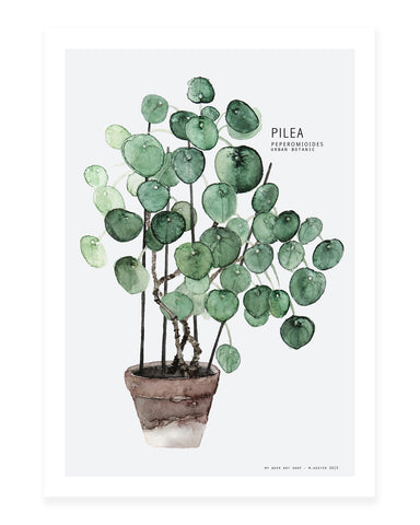 A5 Mini art print - Pilea