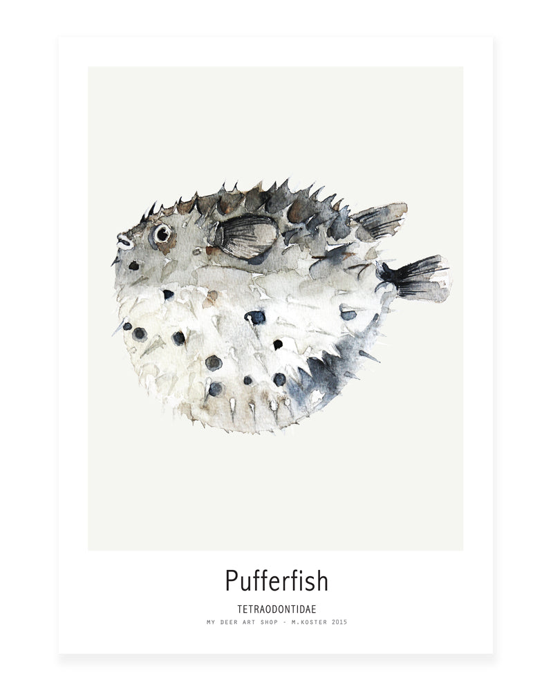 A5 Mini art print - Pufferfish