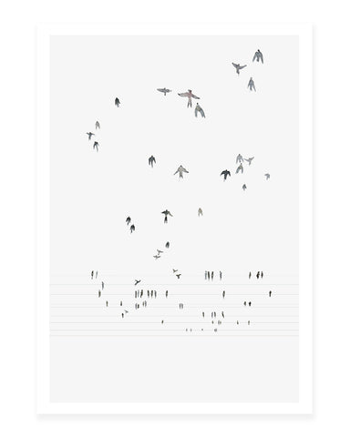 A5 Mini art print - Swallows