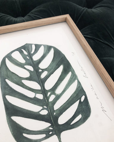 Original // Monstera II