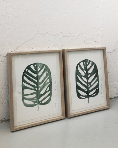 Original // Monstera I