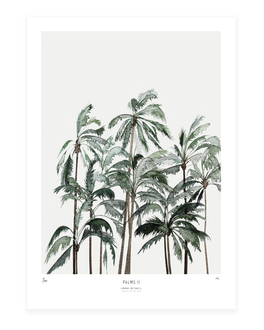Palms II // New!!