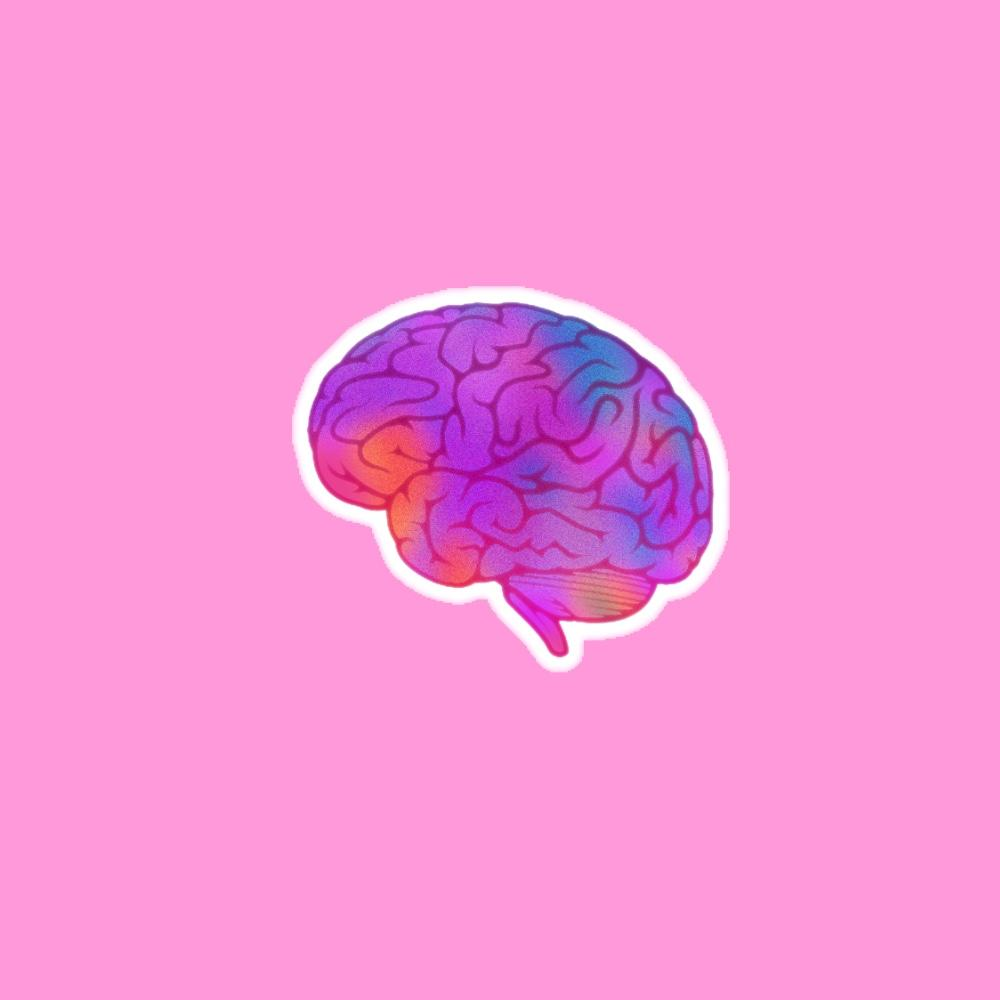 Multicolor Brain Anatomy Sticker cute
