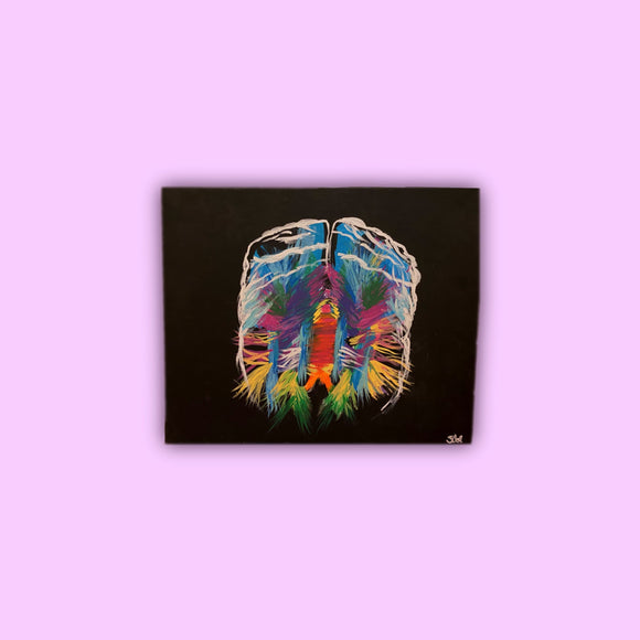 brain anatomy painting vibrant colors of brain against a pitch black background
