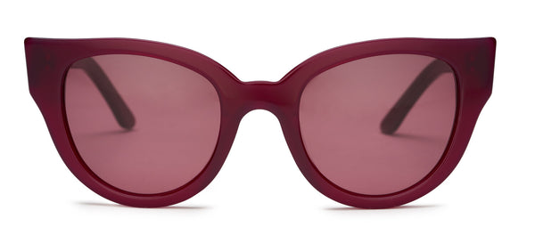 carla colour barton sunglasses