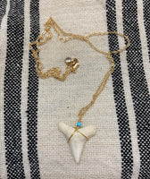 Sharks tooth necklace