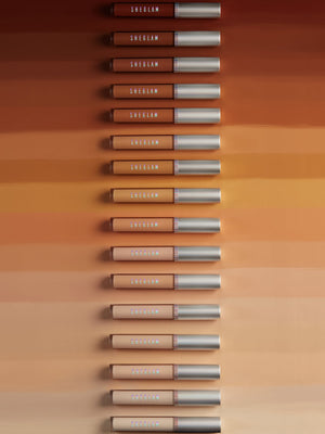 Newly Reformulated - 12-HR Full Coverage Concealer - HONEYCOMB