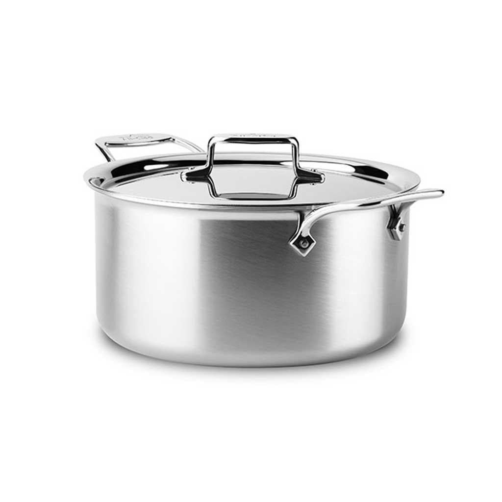 ALL Clad D5 8 Qt Stock Pot