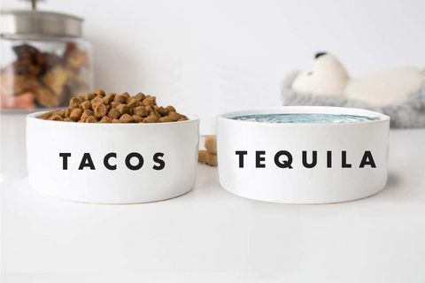 "Pet Set Food And Water Bowls - ""TACOS + TEQUILA"""