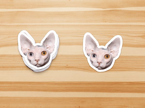 Custom Pet Face Stickers