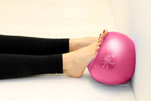 T1022 Tendu Exercise Ball