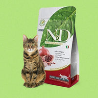 Farmina N&D Grain Free Adult Cat Food - Chicken & Pomegranate - doggietheapp.com