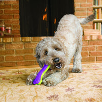 KONG Ionix Bone Dog Toy - doggietheapp.com