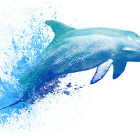 Dolphin Temporary Tattoo - Watercolor Tattoos
