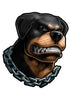 Chained Rottweiler Temporary Tattoos - Inked Dogs Tattoos