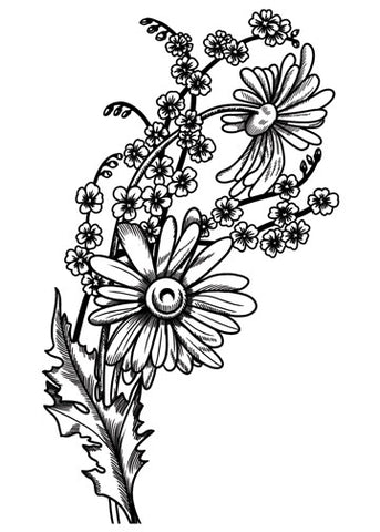 Sketch Daisies Temporary Tattoo - Vintage Floral Tattoos