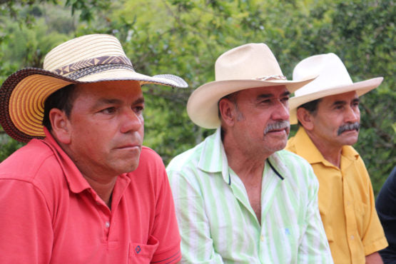 COLOMBIA - Small Producers of Urrao / Washed