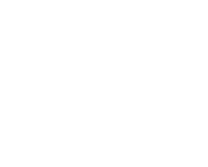Expedition Vehicle Outfitters