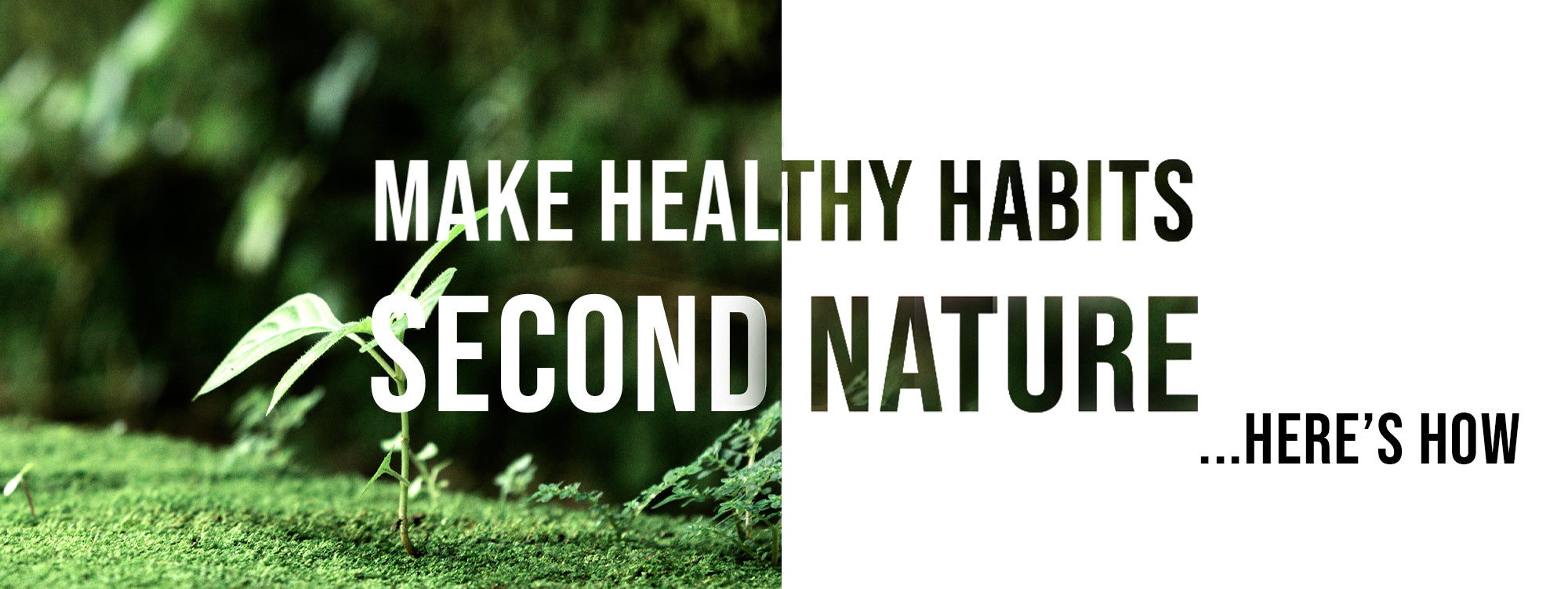 Make Healthy Habits Second Nature – Here's How
