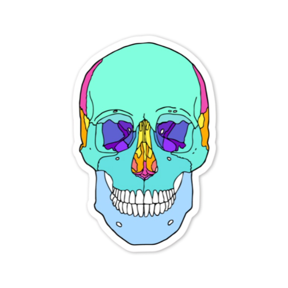 Anatomy Sticker