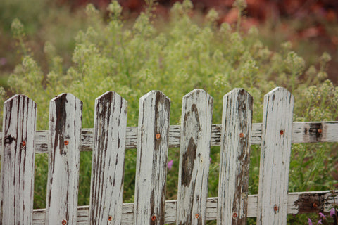 Dirty and Broken Wooden Fence