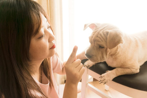 Dog and Human Trying to Communicate