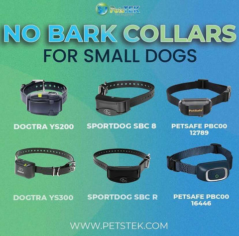 No Bark Collars for Small Dogs