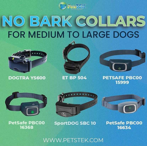 No Bark Collars for Medium and Large Dogs